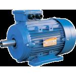 Электродвигатель 5АИ 100S2 - 4x3000 IM1081(B3) лапы ЭЛКОМ