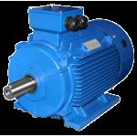 Электродвигатель AIS 200L12 - 30x2950 IM1081(B3) лапы ЭЛЕКТРОМАШИНА